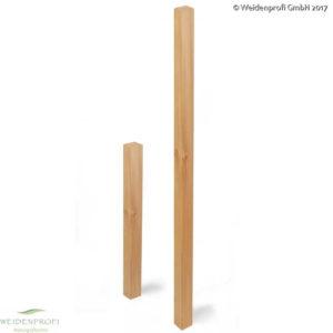 Holzpfosten, Zaunpfosten Lärche, 9 x 9 x 200 cm